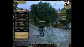 Alvegia Online: BattleField Обзор