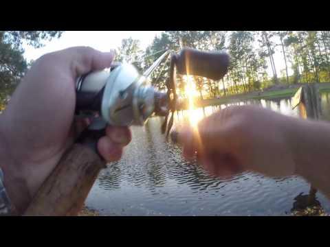 Okuma Stratus V Baitcasting Reel Bass Fishing with Baby Brush Hog