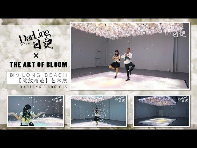 【Darling日记 X The Art of Bloom】探访Long Beach【绽放奇迹】艺术展