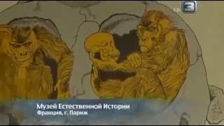 Апокалипсис, мрачные голоса пророков, документальный фильм