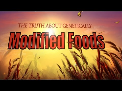 Genetically Modified Foods - GMO's