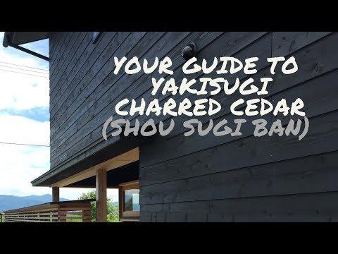 Your Guide to Yakisugi Charred Cedar (Shou Sugi Ban)