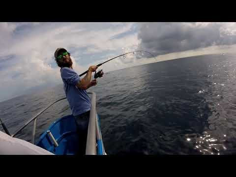 Affordable Boat Fishing With Blue Heron II Boat At Jupiter, FL