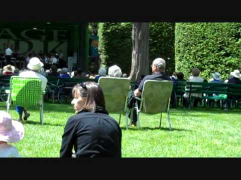 Outdoor Music At Beacon Hill Park