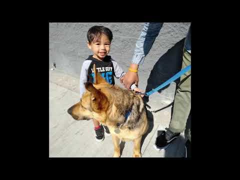 Rescue Von Baker Baldwin : Adopted February 2018