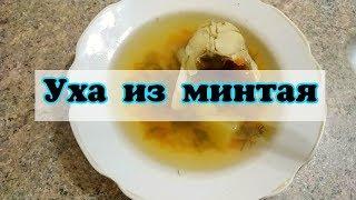УХА из МИНТАЯ/Лёгкие рецепты 🌺