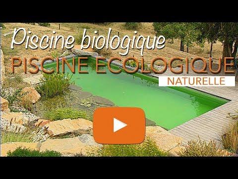 Piscine écologique, biologique ou baignade naturelle.
