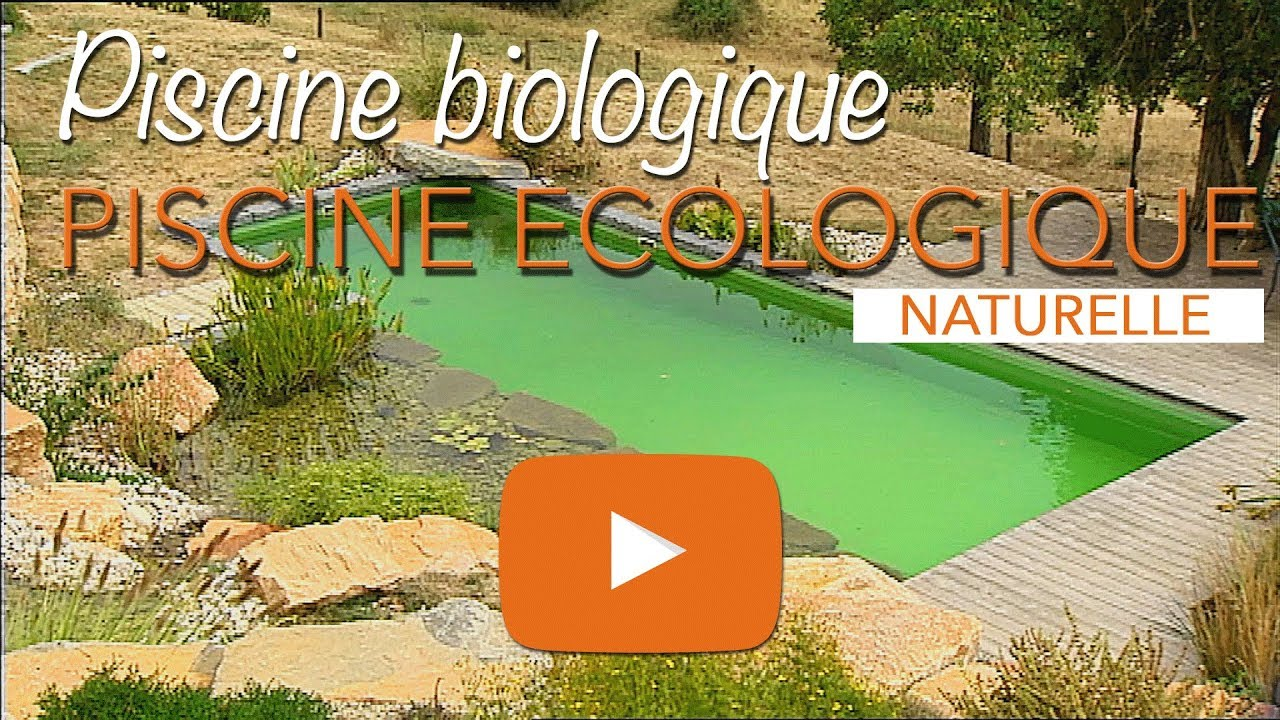 Piscine Naturelle En Kit - Piscine écologique Biologique Ou Baignade  Naturelle Youtube