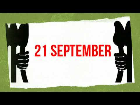 21 September | Industrial tree plantations. Impacts on water