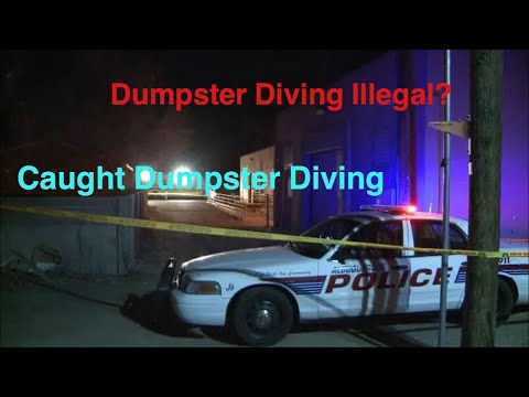 Is Dumpster Diving Il Al Truth About Dumpster Diving