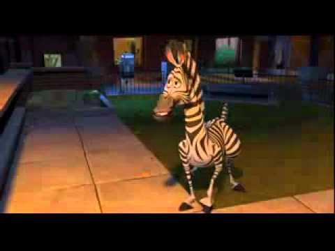 Madagascar Movie Happy Birthday Youtube