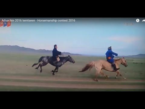 Aduuchin 2016 temtseen - Horsemanship contest 2016