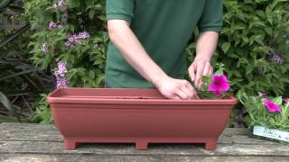 Trough Planting Guide From Gardenxtras.com