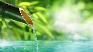 🔴 Música Relajante Y Sonidos Música De Piano: Sonidos De Agua | Sonido De La Lluvia Para Dormir