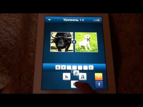 Словикс ~ 2 картинки 1 слово, Какое слово? - ответы 1-25 (уровень 5)