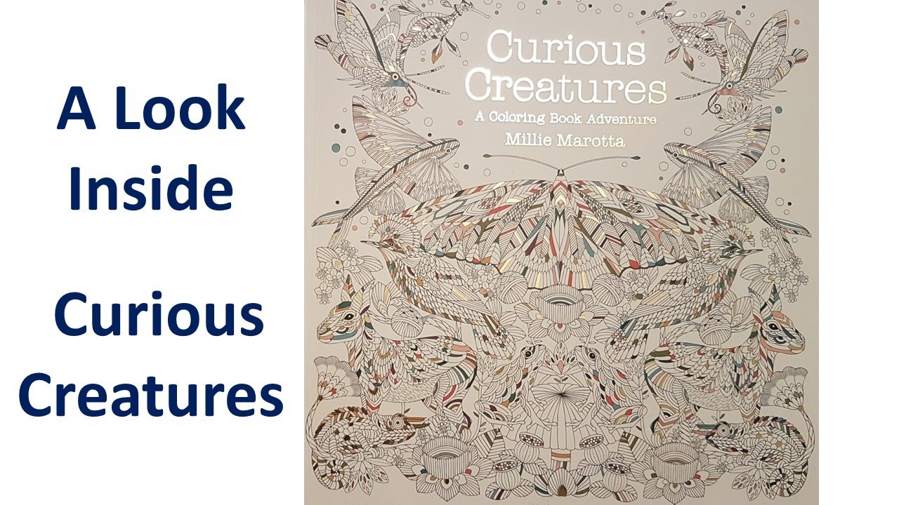 A Look Inside CURIOUS CREATURES By Millie Marotta