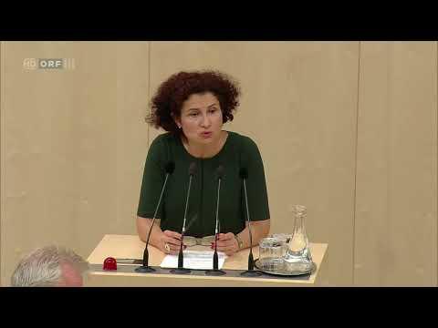 2017 09 20 146906 Nationalratssitzung Alev Korun Grüne