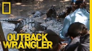 Croc Tug of War | Outback Wrangler