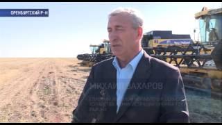 видео Сбор урожая зерновых на Кубани  подходит к концу