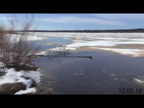 Долгожданный ледоход на реке Печора / Республика Коми / город Вуктыл