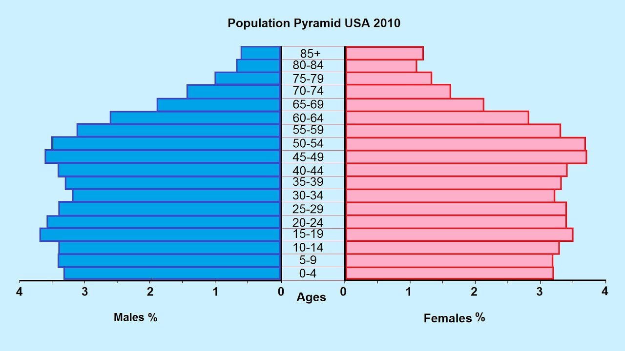 How To Make A Population Pyramid - Youtube-7717