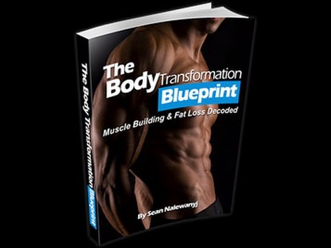 The body transformation blueprint bonus scam or legit youtube the body transformation blueprint bonus scam or legit malvernweather Images