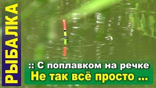 Рыбалка на поплавок на маленькой речке. Оказывается не всё так просто ...