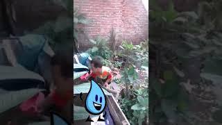 "Lagu anak Di obok-obok  "" Air "" Joshua Suherman Versi Uden Dzikra"