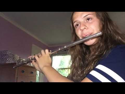 Harry Potter: Fawkes The Phoenix Flute Cover