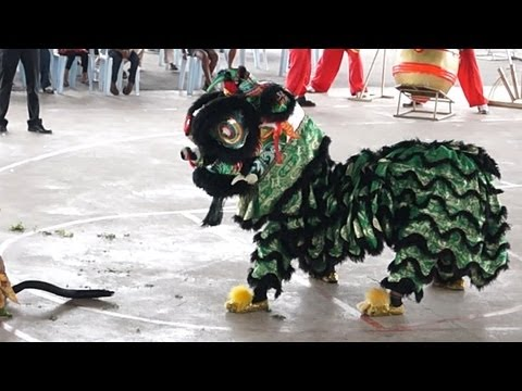 Lion Dance Video 2013 吉隆坡威武金昇龙狮团 傳統舞獅比賽