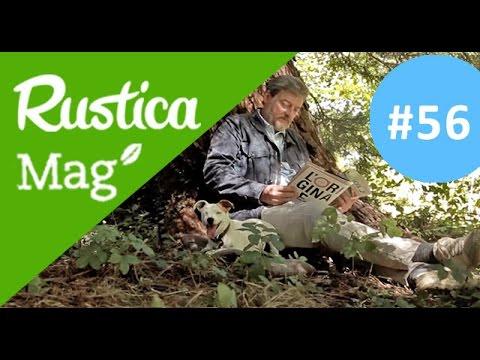 Décorer et aménager un jardin (Rusticamag 56 - saison 03 épisode ...