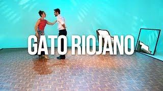 Gato riojano (La Rioja) - BAILEMOS