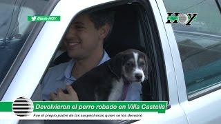 Insólito: devolvieron el perro que se habían robado en Villa Castells