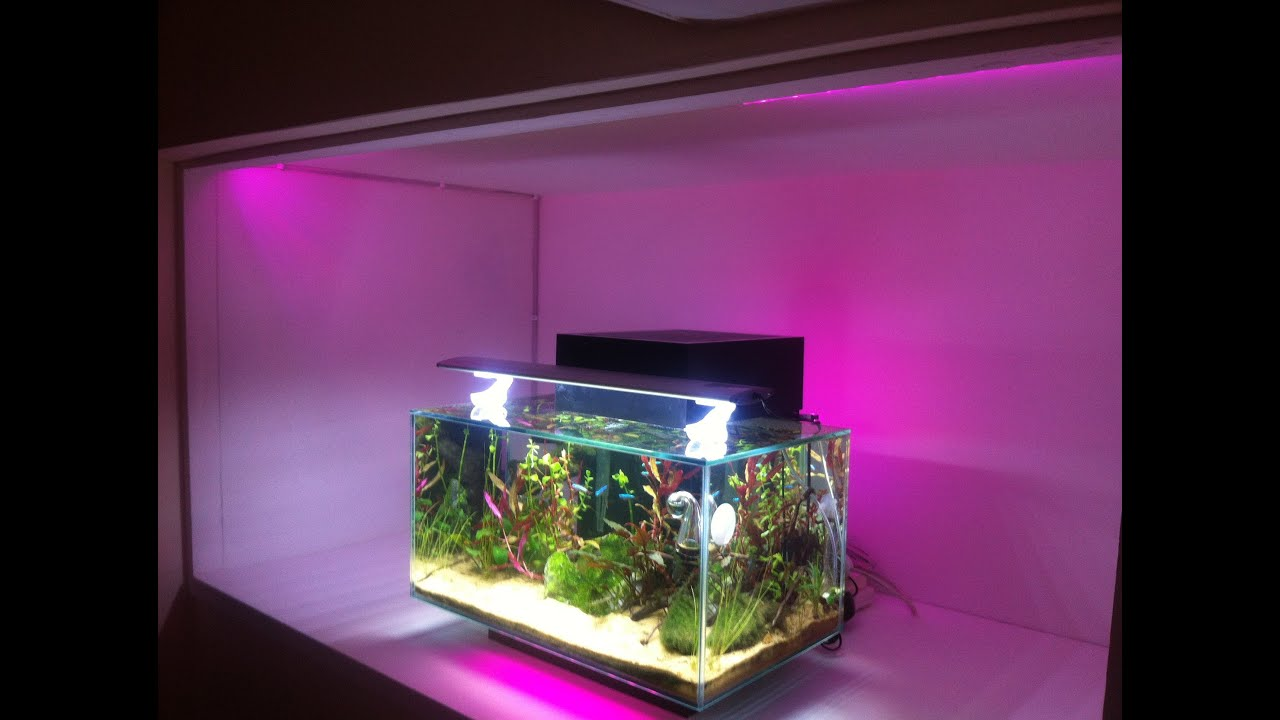 Ikea dioder led lighting a fluval edge tropical fish tank for Fish tank lighting