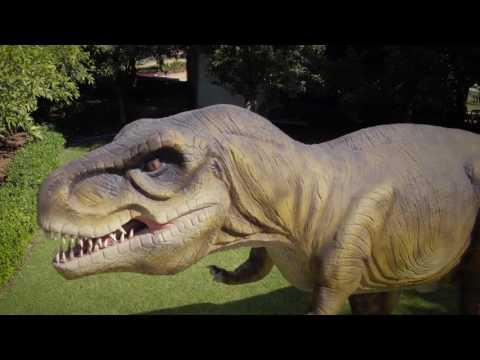 Mega Creatures - Hunter Valley Gardens