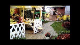 Мой дворик 1 Октября Цветёт Хризантема Бегония Бальзамин Последний урожай осени