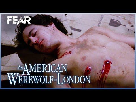 David Is Put Down (Final Scene)   An American Werewolf In London