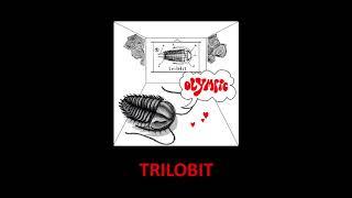 NOVÉ ALBUM OLYMPIC / TRILOBIT 2018