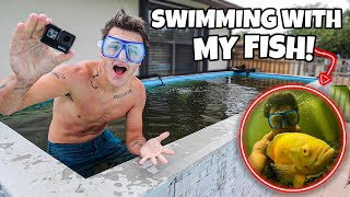 SWIMMING with ALL My FISH in *NEW* 4000G POND!! (underwater footage)