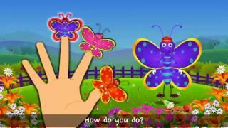 Five butterfly Nursery  Rhyme for kid fun|Best learning video for kids