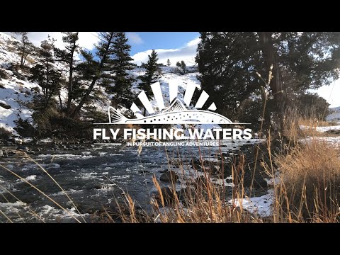 Yellowstone National Park, Christmas Day 2019   Fly Fishing Waters
