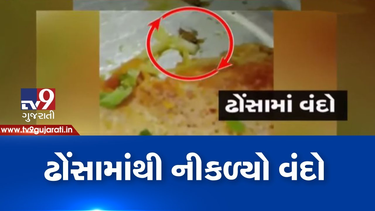 Ahmedabad: Honest restaurant in trouble as customer finds cockroach in Dosa| TV9News