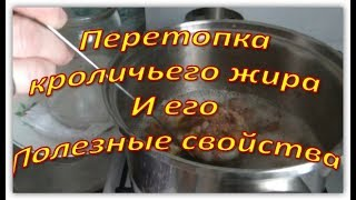 Домашние заготовки. Перетопка кроличьего жира и его полезные свойства