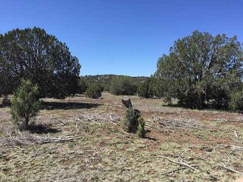 2.25 Acres - Ash Fork Arizona - Land For Sale