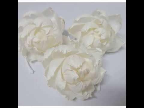 Beautiful Peonies Handmade Dried Flower Sola Wood Reed Diffuser Spa Fragrance Hotel Aroma DIY #SW031