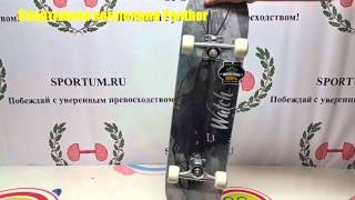 Обзор скейтборда Спортивная коллекция Panther / Review skateboard