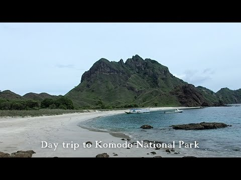 Day Trip to Komodo National Park from Labuan Bajo