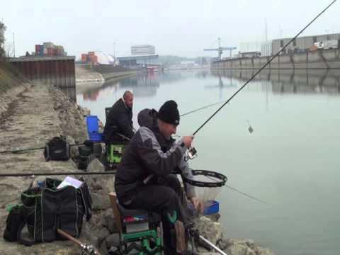 Feeder Fischen Mit Dem Team Maver Xtreme In Wien