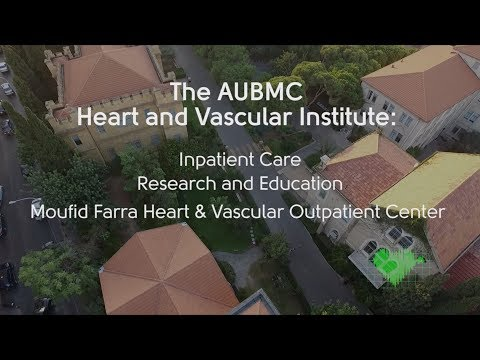 The Heart And Vascular Institute At AUBMC