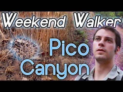 rattle-snake-encounter-at-pico-canyon-|-la-hiking